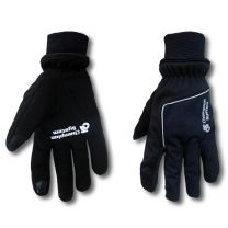APEX Winter Handschoenen